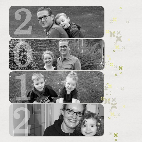 Fedynak Family 2012