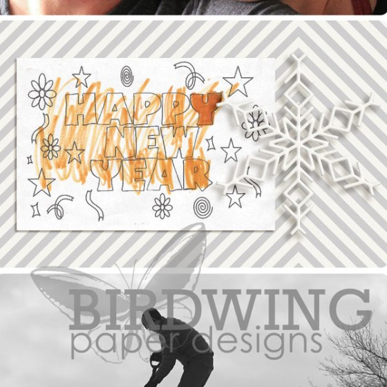 2014 Family Photobook - Birdwing Paper Designs