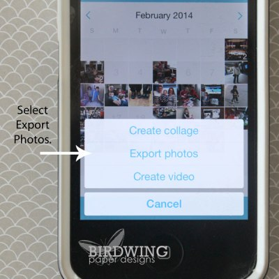 Export Your Collect App Cards - Birdwing Paper Designs