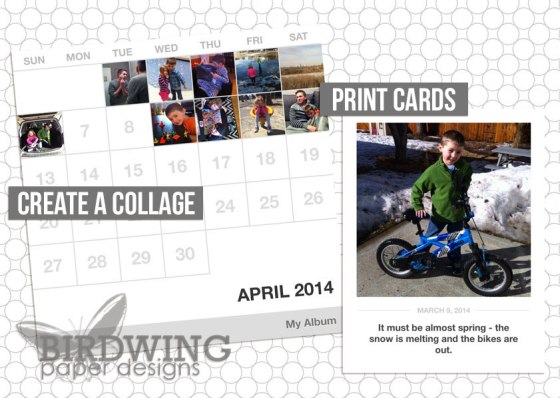 Collect App Collage and Cards - Birdwing Paper Designs
