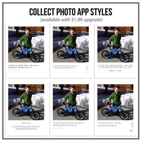 Collect App Styles - Birdwing Paper Designs