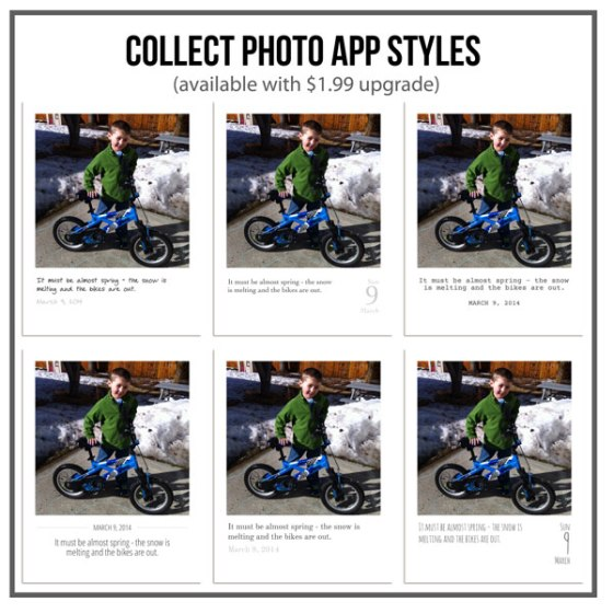 Collect App Styles - Birdwing Paper Designs