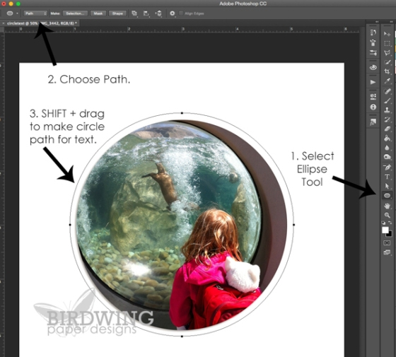 Circular Text in Photoshop - Birdwing Paper Designs