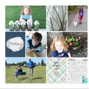 2015 Family Album Summer Update - Birdwing Paper Designs