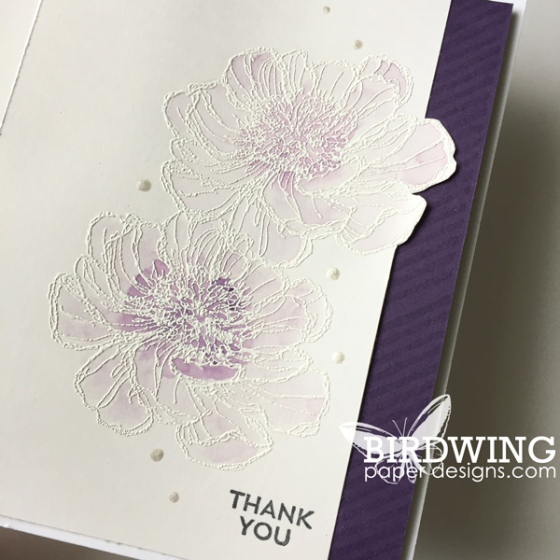 Shimmer Paint from Stampin' Up! - Birdwing Paper Designs