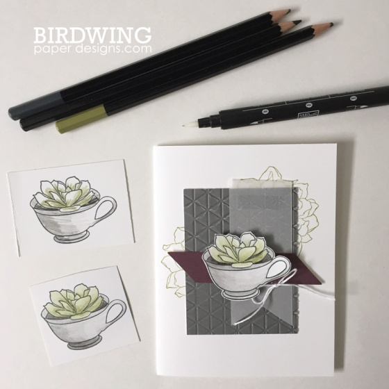Trendy Succulent Cards - Birdwing Paper Designs