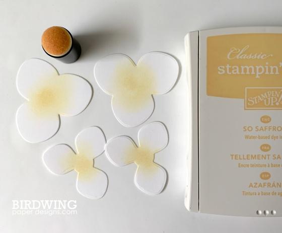 Paper Magnolia Flowers - Birdwing Paper Designs