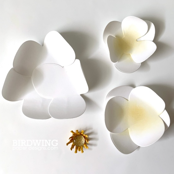 Paper Magnolia Flowers - Birdwing Paper Designs