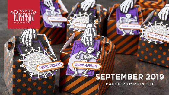 September 2019 Paper Pumpkin Kit from Stampin' Up!