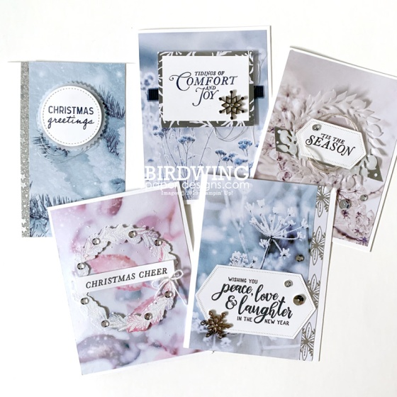 Christmas Card Packs: Winter Frost - Birdwing Paper Designs