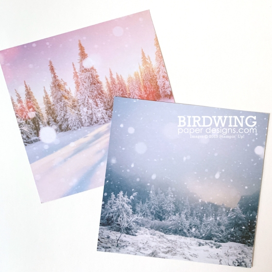Feels Like Frost Paper - Stampin' Up!